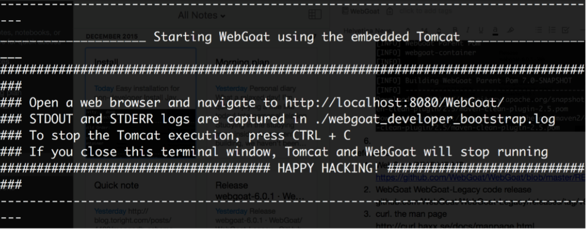 WebGoat installation